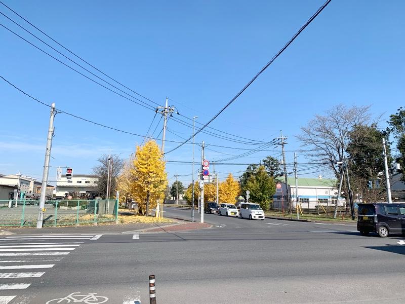 YOKOKURA STORE HOUSE のお店の前の景色